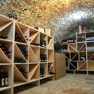 Structure: Cellar